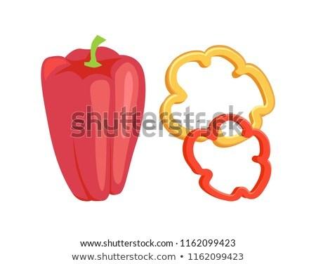 Paprika hüvely izolált vektor ikon rajz Stock fotó © robuart
