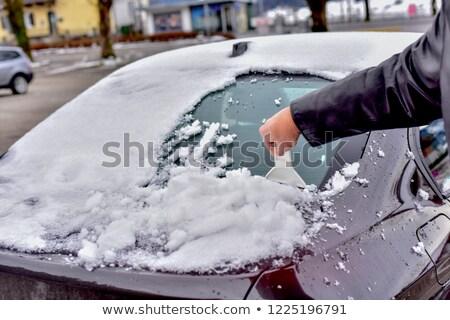 férfi · hó · téli · tájkép · dolgozik · kalap · férfi - stock fotó © lopolo