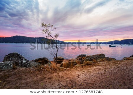 Cloudy sunrise at Brooklyn foreshore Australia Stock photo © lovleah