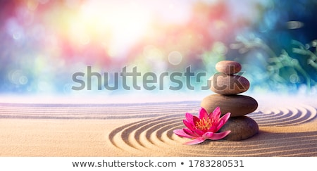spa · procedure · mariene · zout · lichaam · massage - stockfoto © mythja