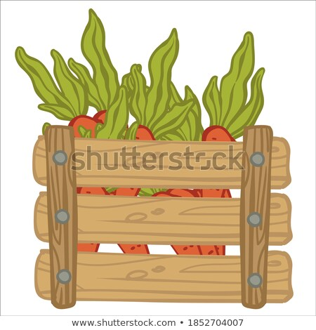 Harvesting Season, Gathered Food in Containers Stock photo © robuart