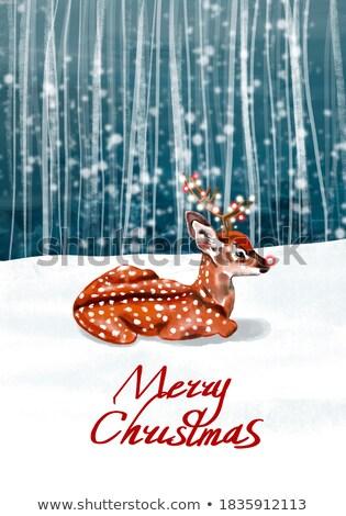 Vidám karácsony gratuláció szalag poszter üdvözlőlap Stock fotó © MarySan