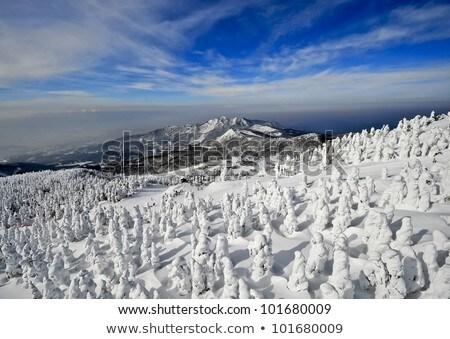 a cold day in sendai japan stock photo © 3523studio