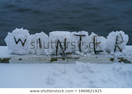 Word FUTURE frozen in the ice Stock photo © a2bb5s