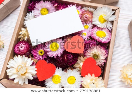 Valentine's Day greeting card with flowers heart on red backgrou Stock photo © WaD