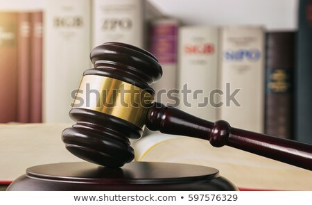 A gavel and a law book - Germany Stock photo © Zerbor