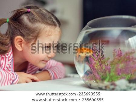 Meisje naar vis tank aquarium kind Stockfoto © wavebreak_media