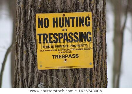 no hunting stock photo © adrenalina