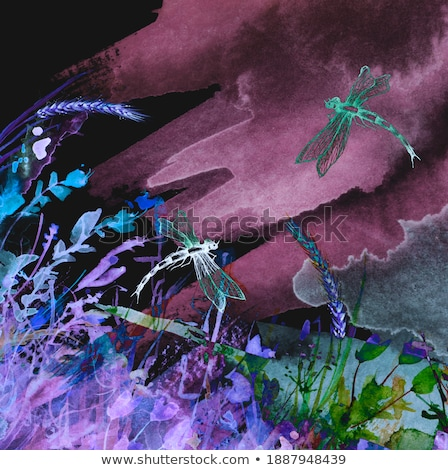 Whirlwind with night butterflies Stock photo © blackmoon979