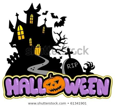 halloween house silhouette theme 2 stock photo © clairev