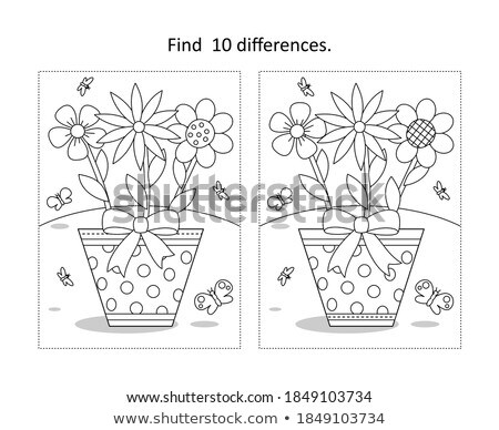 spot the difference flower stock photo © olena
