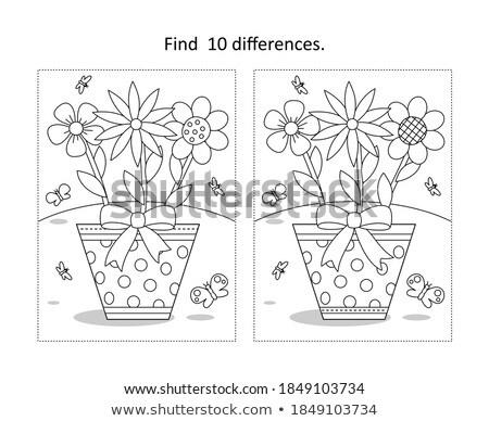 Ort Unterschied Blume Spiel Kinder Erwachsene Stock foto © Olena