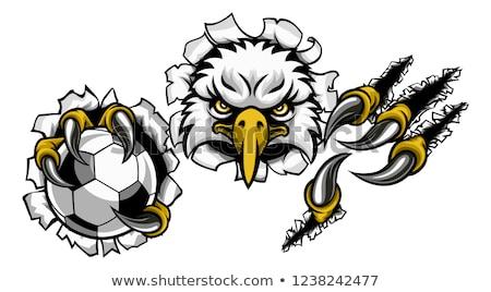 Foto stock: Eagle Soccer Cartoon Mascot Tearing Background