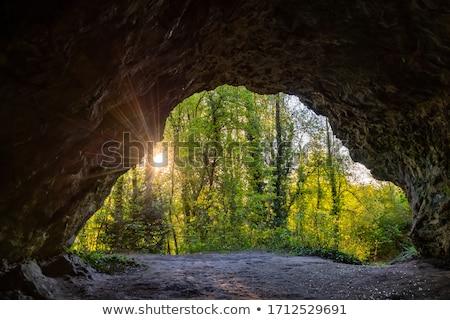 Jaskini charakter ilustracja krajobraz projektu liści Zdjęcia stock © colematt