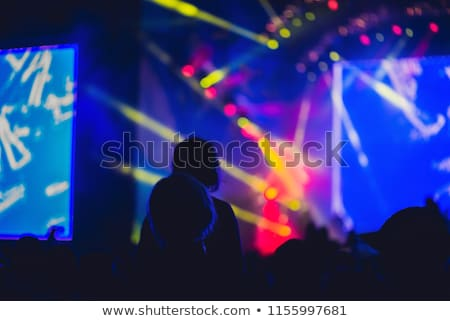 Silhouette of a big crowd at concert against a brightly lit stage. Night time rock concert with peop Stock photo © galitskaya