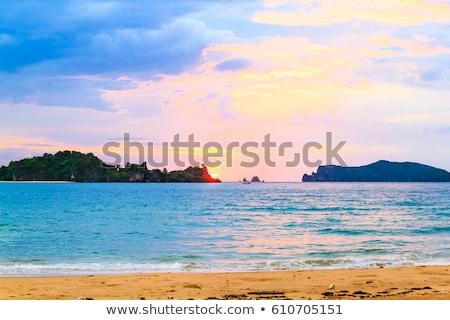 пляж · рассвета · свет · цветами · небе · морем - Сток-фото © yongkiet