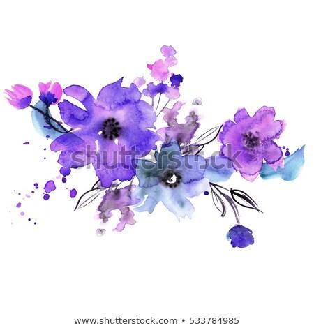 Belle bleu pourpre fleurs nature jardinage Photo stock © chrisga