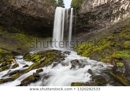 Stock photo: Waterfall along Cold Spring Creek in Oregon