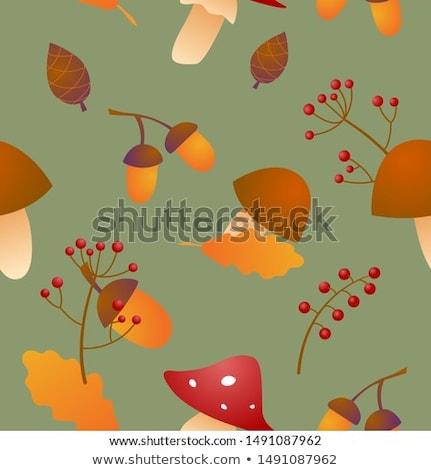 padrão · textura · natureza · fundo · papel · de · parede · cozinhar - foto stock © doomko