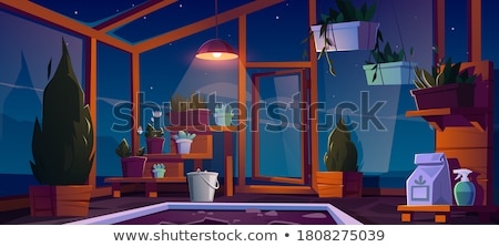 House Plants Standing on Wooden Shelf Greenhouse Stock photo © robuart