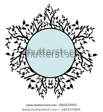 Frame bladeren natuurlijke romantische decoratie Stockfoto © odina222