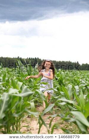 derűs · gyermek · vidék · imádnivaló · szőke · nő · fut - stock fotó © konradbak