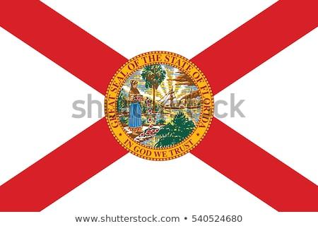 Florida · zászló · nagy · illusztráció · USA · szalag - stock fotó © tony4urban