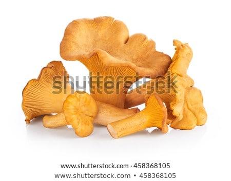 Heap of Fresh Raw Chanterelle Mushrooms Stock photo © zhekos
