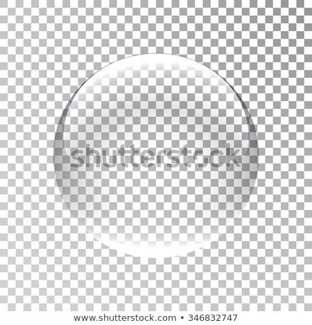 Transparente vidro globo preto de volta terra Foto stock © ziprashantzi
