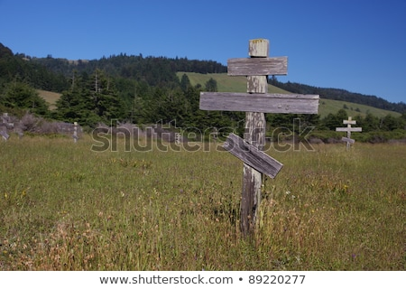 Vecchio attraversa storico ortodossa cimitero fort Foto d'archivio © meinzahn