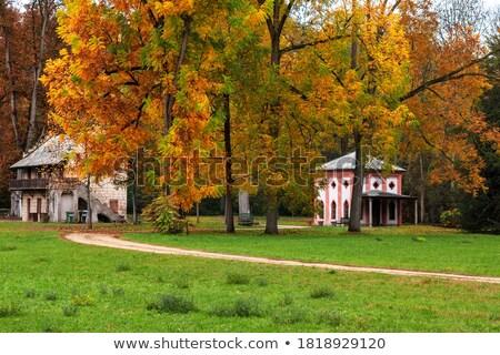 Strada alberi Italia colorato settentrionale Foto d'archivio © rglinsky77