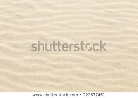 harmônico · padrão · praia · natureza · fundo · oceano - foto stock © meinzahn