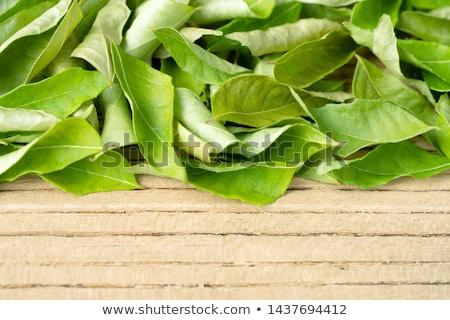 Essiccati strigliare foglie buio top Foto d'archivio © szefei