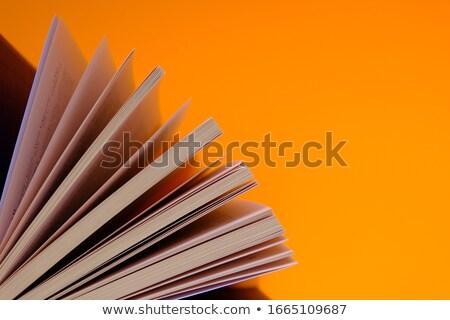 Orange on book Stock photo © Witthaya