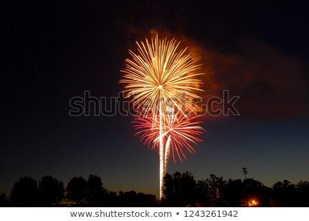 firework over city at night Stock photo © ssuaphoto