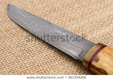 kés · fekete · penge · fából · készült · fogantyú · izolált - stock fotó © leonardi