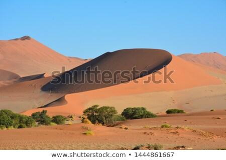 kum · Namibya · manzara · çöl · Afrika - stok fotoğraf © dirkr