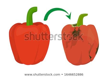 die red pepper Stock photo © jarp17