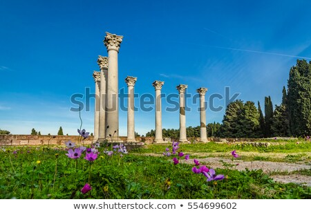 Archeological site on the island of Kos, Greece Stock photo © pixpack