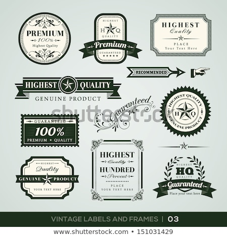 Best Quality Green Vector Icon Design Stock photo © rizwanali3d