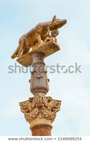 the statue of romul and remus stock photo © vladacanon