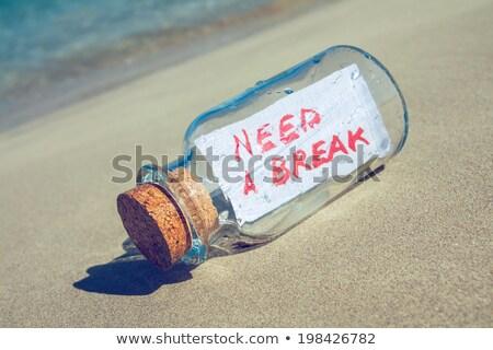 Zomer strand illustratie water zee Blauw Stockfoto © bluering
