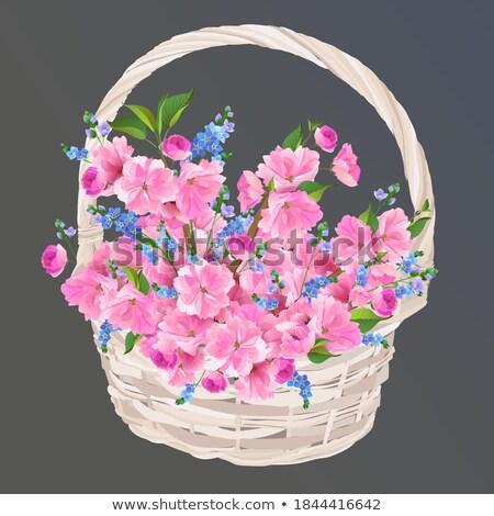 Woman carrying a wickerwork basket Stock photo © IS2