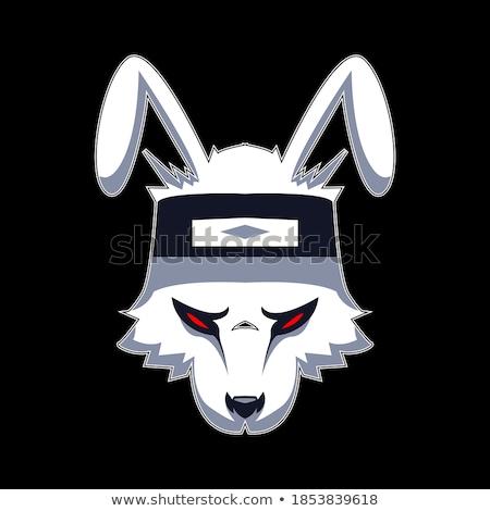 Cartoon zły piłkarz bunny patrząc Zdjęcia stock © cthoman