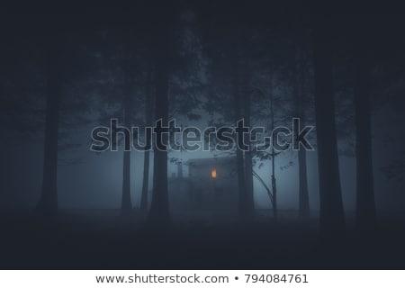 Nawiedzony domu lasu ilustracja krajobraz domu Zdjęcia stock © colematt
