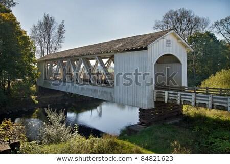 cubierto · puente · arroyo · Oregón - foto stock © davidgn