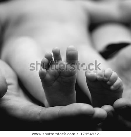 mãos · adulto · bebê · dois · homem - foto stock © iriana88w