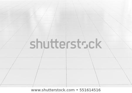 Padló csempék absztrakt barna kereszt bent Stock fotó © maxmitzu