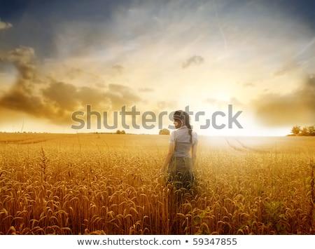 Kobieta pole pszenicy wygaśnięcia hat krajobraz piękna Zdjęcia stock © Lopolo