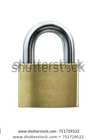 lock on a white background Stock photo © ozaiachin